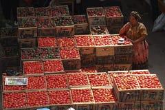 Donna che vende molte casse dei pomodori. Immagini Stock