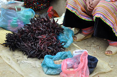 Donna che vende peperoncino rosso nel mercato di Bac Ha, Vietnam Fotografia Stock Libera da Diritti