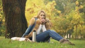 Donna che versa tè caldo dal termos, bevanda di riscaldamento, picnic nella foresta di autunno archivi video