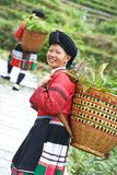 Donna cinese sorridente Yao di minoranza Immagine Stock