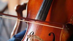 Donna con gli archi del violoncello sulle corde in primo piano stock footage