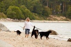 Donna con i cani Immagine Stock