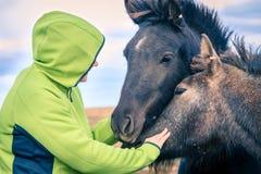 Donna con i cavallini islandesi Fotografia Stock Libera da Diritti