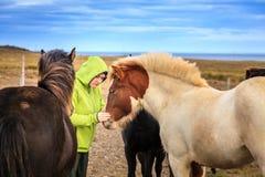 Donna con i cavallini islandesi Fotografie Stock Libere da Diritti