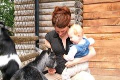 Donna con il bambino che picchietta la capra allo zoo Fotografie Stock Libere da Diritti