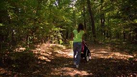 Donna con il bambino ed il passeggiatore che camminano nella vista della foresta dalla parte posteriore stock footage