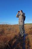 Donna con il birdwatching del binocolo, immagini stock libere da diritti
