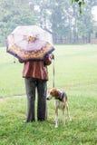 Donna con il cane mentre camminando in tempo piovoso Donna con umbrella_ fotografia stock