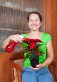 Donna con il fiore della stella di natale Fotografia Stock Libera da Diritti