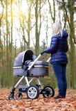 Donna con il passeggiatore di bambino immagini stock libere da diritti
