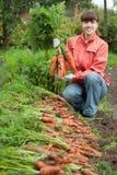 Donna con il raccolto della carota Fotografie Stock