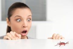 Donna con il ragno di plastica che agisce spaventato Fotografie Stock Libere da Diritti