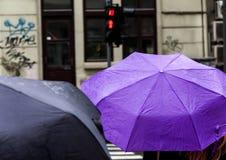 Donna con l'ombrello il giorno piovoso che aspetta per attraversare la via Immagini Stock