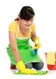 Donna con la strumentazione di pulizia Immagine Stock