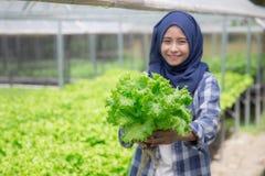 Donna con lattuga che sta nell'azienda agricola hydropohonic Fotografia Stock