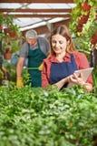 Donna con le piante di controllo della lavagna per appunti Immagine Stock