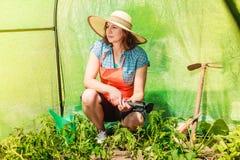 Donna con lo strumento di giardinaggio che funziona nella serra Fotografia Stock Libera da Diritti
