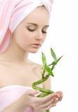 Donna con una pianta verde. Immagini Stock Libere da Diritti