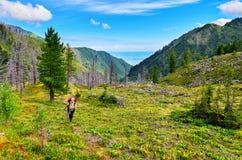 Donna con uno zaino che va su traccia di montagna Fotografia Stock