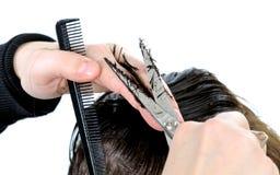 Donna dei capelli di taglio fotografia stock libera da diritti