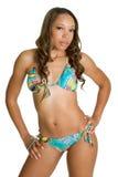 Donna del bikini immagini stock