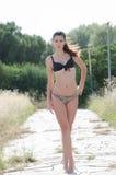 Donna del bikini fra in alta erba asciutta Fotografia Stock