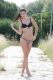 Donna del bikini fra in alta erba asciutta Immagine Stock
