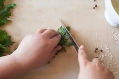 Donna del cuoco che taglia prezzemolo verde sullo scrittorio Immagini Stock