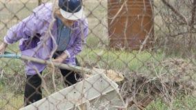 Donna del giardiniere che per mezzo della pala per la terra di scavatura e versando nella carriola stock footage
