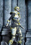 Donna del guerriero di fantasia Fotografia Stock