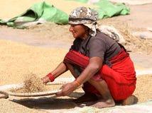 Donna del Nepali Fotografie Stock