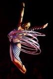 Donna dell'acrobata immagine stock libera da diritti