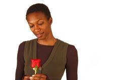 Donna dell'afroamericano che tiene una singola Rosa rossa Fotografia Stock