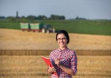 Donna dell'agricoltore al raccolto Immagine Stock Libera da Diritti