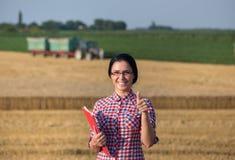 Donna dell'agricoltore al raccolto Fotografie Stock Libere da Diritti