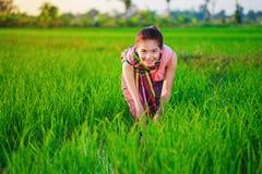 Donna dell'agricoltore che lavora nel giacimento del riso Fotografia Stock