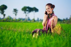 Donna dell'agricoltore che rivolge al telefono cellulare in un giacimento del riso Immagine Stock Libera da Diritti