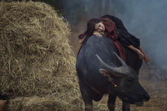 Donna dell'agricoltore che si trova sul suo bufalo Fotografia Stock Libera da Diritti