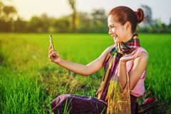 Donna dell'agricoltore che utilizza uno Smart Phone in un giacimento del riso Fotografia Stock Libera da Diritti