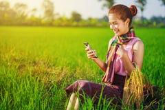 Donna dell'agricoltore che utilizza uno Smart Phone in un giacimento del riso Immagine Stock