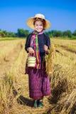 Donna dell'agricoltore con il trasportatore del tiffin nel giacimento del riso Immagini Stock