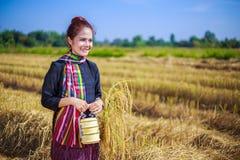 Donna dell'agricoltore con il trasportatore del tiffin nel giacimento del riso Fotografia Stock