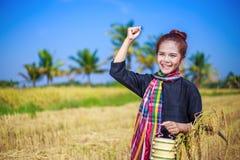 Donna dell'agricoltore con il trasportatore del tiffin nel giacimento del riso, Tailandia Fotografia Stock