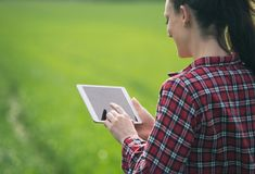 Donna dell'agricoltore con la compressa nel campo verde fotografia stock