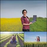 Donna dell'agricoltore nel campo Immagini Stock Libere da Diritti