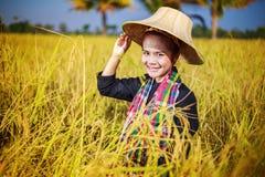 Donna dell'agricoltore nel giacimento del riso Immagine Stock