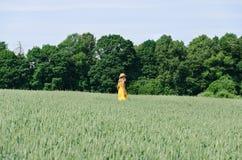 Donna dell'agricoltore nel giacimento di grano giallo della passeggiata del vestito Fotografia Stock