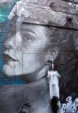 Donna dell'indiano di arte della via Immagine Stock
