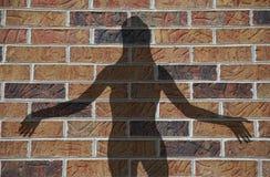 Donna della casa con mattoni a vista Immagini Stock