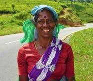 Donna della raccoglitrice del tè dello Sri Lanka Fotografie Stock Libere da Diritti